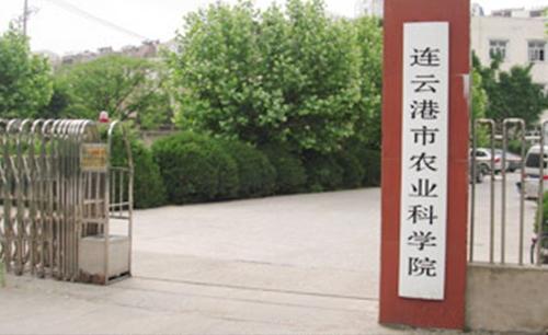 连云港农科所